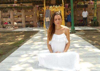 Ispod svetog Bodi drveta, istog onog gde se Buda prosvetlio