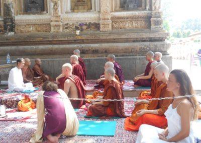 Sveto drvo Budinog prosvetljenja